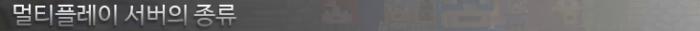 멀티플레이 서버의 종류.png