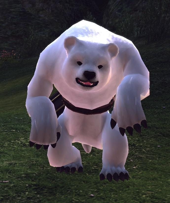 북극곰1.jpg