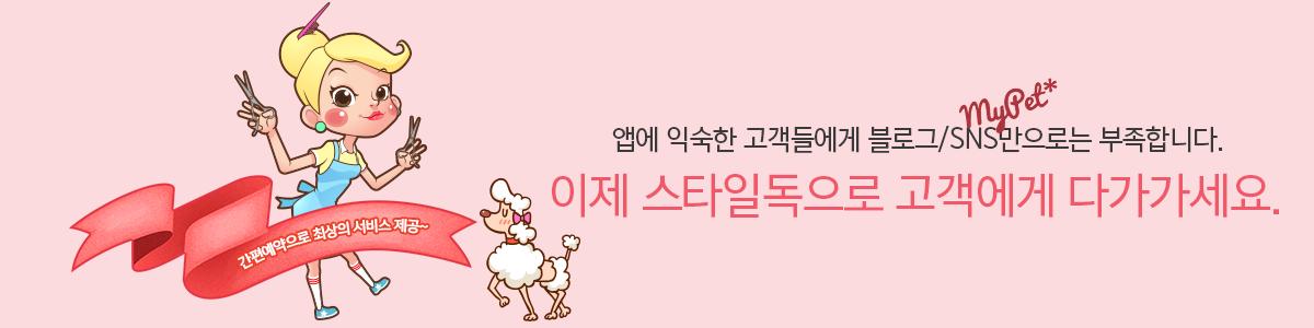 스타일독 상단배너1